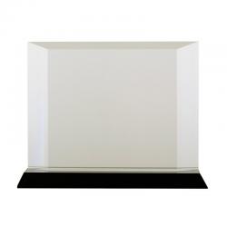 Bardzo stylowe kryształowe trofeum - R22180