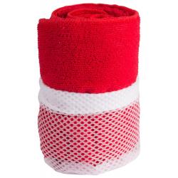 Ręcznik sportowy z mikrofibry z pokrowcem - AP741547