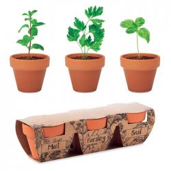 Zestaw 3 glinianych doniczek z terakoty z nasionami - MO6145