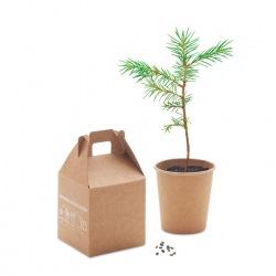 Drzewo sosny - MO6228