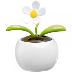 Doniczka z kwiatkiem  - V9527-02