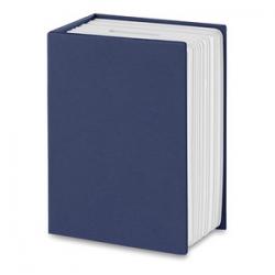 Skrytka w kształcie książki - mo8674